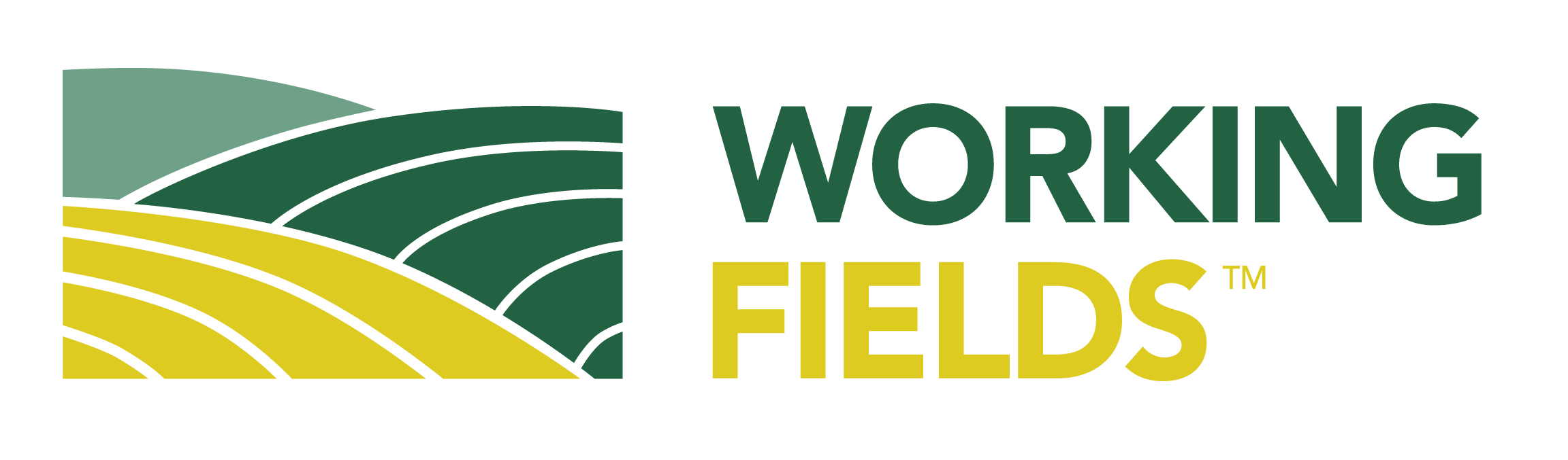 Working Fields LLC